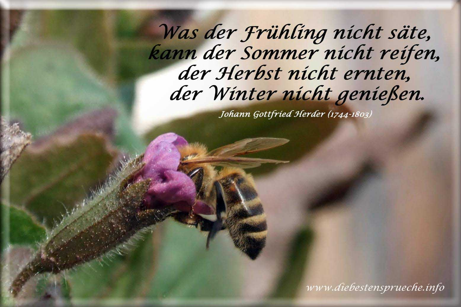 Frühlingssprüche