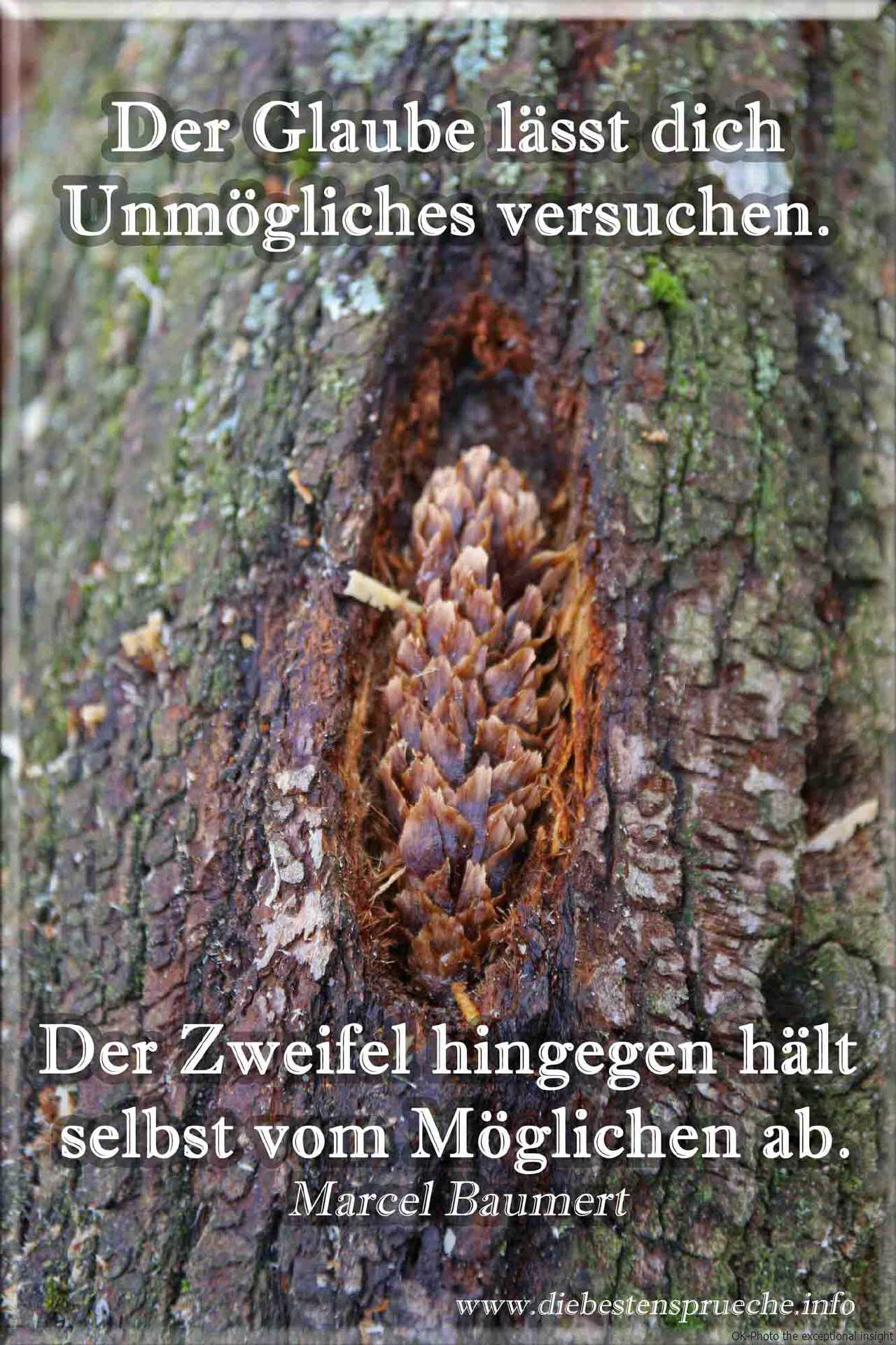Image Result For Beste Zitate Witzig